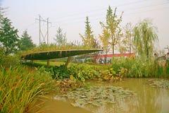 Jardin vert d'expo à Zhengzhou Image libre de droits