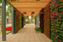 Jardin vert d'expo à Zhengzhou Images stock