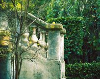 Jardin vert en France Images stock