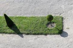 Jardin vert sur un fond de texture de cailloux photo stock