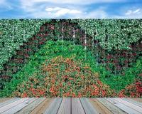 Jardin vertical de mur photos stock