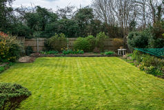 Jardin/yard britanniques typiques pendant l'été Photos libres de droits