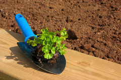 Jardinage - 07 Photo libre de droits