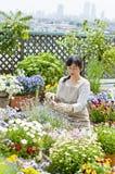 Jardinage Photographie stock