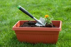Jardinage Photos libres de droits