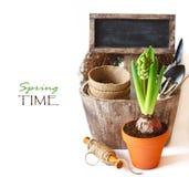 Jardinage. image stock