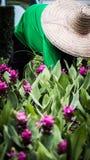 Jardinage Image libre de droits