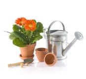 jardinage Images libres de droits