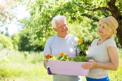 Jardinage aîné de couples Photos libres de droits