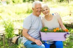 Jardinage aîné de couples Images stock
