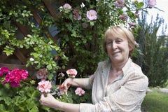 Jardinage aîné de femme photographie stock