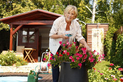 Jardinage aîné de femme Photo stock