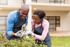 Jardinage africain de couples Photos stock