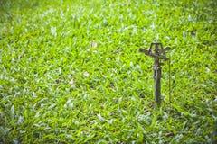 Jardinage Arroseuse automatique de pelouse sur l'herbe verte extérieur Photos stock