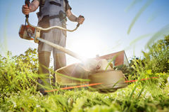 Jardinage avec un brushcutter images libres de droits