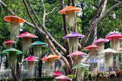 Jardinage créatif en harmonie avec la nature image stock