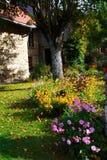 Jardinage d'automne Image libre de droits