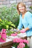 Jardinage de femme photos libres de droits