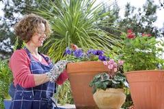 Jardinage de femme Photographie stock libre de droits