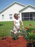 Jardinage de femme enceinte Image stock