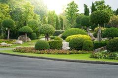 Jardinage et aménagement avec les arbres décoratifs image libre de droits