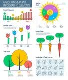 Jardinage et usine Infographic Photos stock