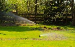 Jardinage L'eau de pulvérisation d'arroseuse de pelouse au-dessus de l'herbe Photos libres de droits