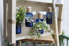 Jardinage Recycled photographie stock