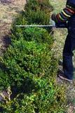 Jardinagem, cortando a conversão Fotografia de Stock