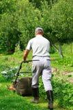 Jardinagem - cortando a grama fotos de stock