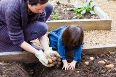 Jardinagem da mãe e da criança fotografia de stock