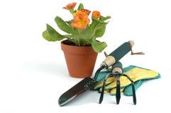 Jardinagem da mola Imagem de Stock Royalty Free