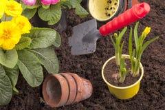 Jardinagem da mola Imagens de Stock