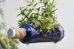 Jardinagem de Eco Imagens de Stock