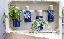 Jardinagem de Eco Fotografia de Stock