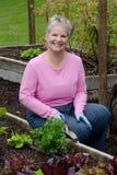 Jardinagem de sorriso da mulher Fotografia de Stock