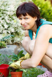 Jardinagem de sorriso feliz da mulher da Idade Média Fotografia de Stock
