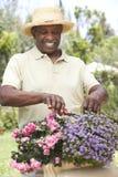 Jardinagem do homem sênior Fotos de Stock Royalty Free