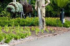 Jardinagem e ajardinar Imagens de Stock Royalty Free