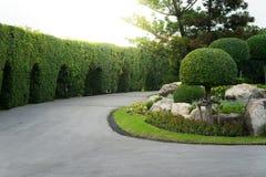 Jardinagem e ajardinar com árvores decorativas Imagens de Stock Royalty Free