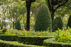 Jardinagem e ajardinar com árvores decorativas Fotografia de Stock