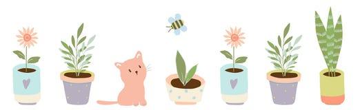 Jardinagem em casa plantas em uns potenci?metros cer?micos ilustração stock
