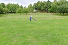 Jardinagem, homem que sega o gramado Imagem de Stock