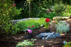 Jardinagem Plantas lindos prontas para plantar em Sunny Garden O jardim da mola trabalha o conceito Jardim japonês Imagens de Stock