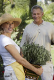 Jardinagem superior dos pares imagens de stock royalty free