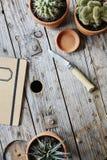 Jardinagem urbana com faca e caderno Imagem de Stock Royalty Free