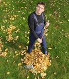 Jardinando, ajuntando as folhas na queda Foto de Stock