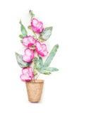 Jardinando ou plantando o conceito com plantação de potenciômetros da turfa e de flores cor-de-rosa no fundo branco, vista superi Foto de Stock Royalty Free