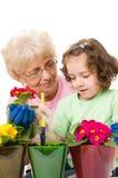 Jardinando, plantando conceitos Foto de Stock