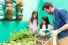 Jardinar é uma maneira de crescer sua ligação imagem de stock royalty free